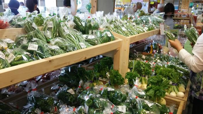 南房総富山の農産物が並ぶ「豊作市場」は、その名通りに豊かで色とりどり。 当市場には350人もの生産者が関わるため、一口に野菜といっても、その種類は実に様々です。都心部の八百屋やスーパーでは見かけない珍しい野菜も数多く扱われ、房総の特産の切り花や、特産米も種類多く陳列されています。