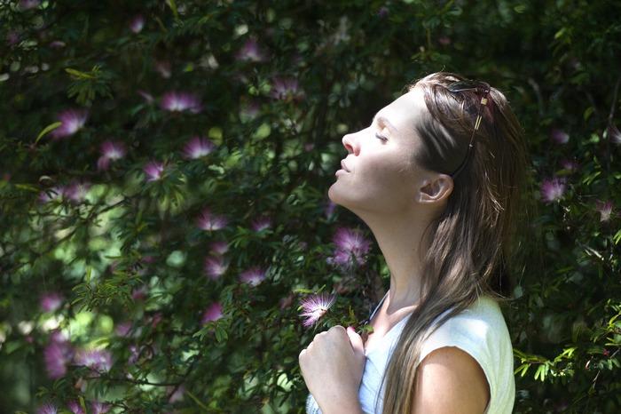 樹木に触れ、癒しを求めるのが「森林浴さんぽ」です。フィトンチッドという香り成分や、1/fゆらぎという自然音が、ストレスホルモンを減少させ、疲労回復にも効果があります。近くの公園や植物園で気軽に楽しめますし、キャンプや登山といった本格的な森林浴ならリフレッシュ効果は絶大です。