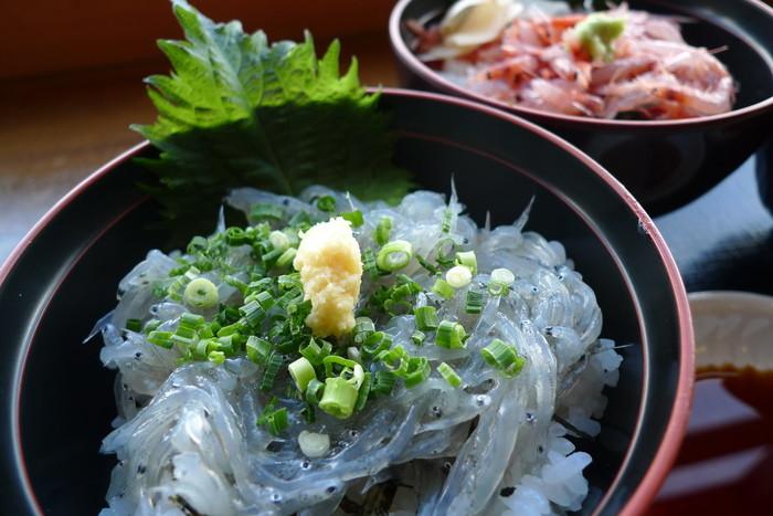 富士川楽座で人気を博しているのが、「富士山フードコートテラス」の『わんこ丼セット』です。桜えび丼・しらす丼・まぐろ漬け丼・天丼・カツ丼等から好みの2種を選べる欲張りなセットです。