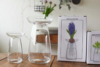 和洋、どんなインテリアにもスッキリとけ込み、サイズはφ120 x H190 mm のLサイズと、φ80 x H125 mm のSサイズがあり、どちらも水耕栽培以外に、花瓶としても使用できるので、両方揃えておくのも良いかも。