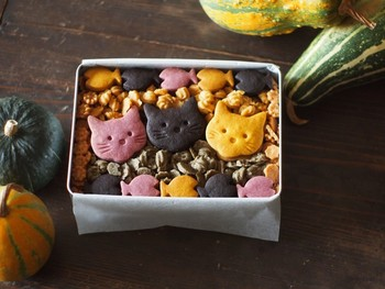 <「いたずらねこのハロウィン」クッキー缶>  子供用から大人用まで幅広いギフトにおすすめのクッキー缶です。ネコ好きさんへのプレゼントにも◎植物性の材料のみを使っているところも嬉しいポイント。乳製品や卵アレルギーがある方への贈りものにも参考にしてみてください。