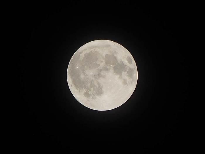 月の満ち欠けが人間の心身にも影響を及ぼしていることは、遠い昔から知られていたことのよう。それと関係しているのか定かではありませんが、月が満ちているときに切ると、いいことが起こると信じられています。