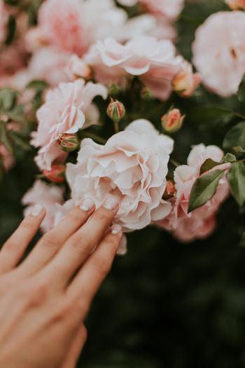 爪を乾燥させなければいけないため、しっかりと完治するまでネイルは控えたほうが◎ 症状によって個人差はありますが、施術可能になるまでの期間は、だいたい2ヶ月~長くて1年程度のようです。