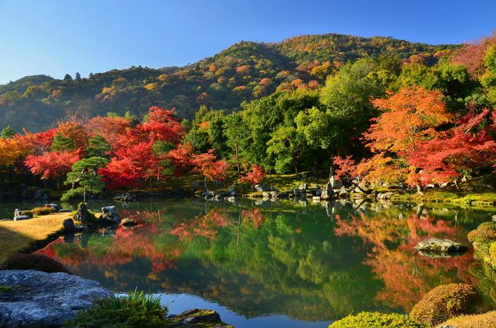 回遊式の美しい庭園。室町時代の庭園の設計で有名な夢窓疎石(むそうそせき)により作られました。嵐山の景観を取り入れた借景が特徴です。紅葉の時期には水面にも木々の色が映り、美しさは格別。