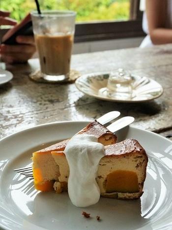 デザートも数種類用意されています。食後のデザートにはもちろん、阿蘇神社に寄った帰りにカフェとして利用している人も多いんですよ。