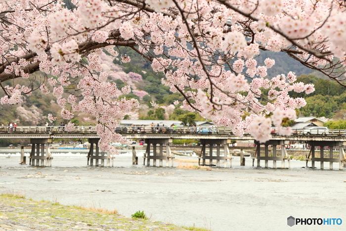 「嵐山」という地名も、峰々の桜やもみじが、山から吹き下ろす風に散らされて吹雪のようになる様子から付けられた、とされています。風光明媚なことから、平安時代には貴族の別荘も多く建てられました。