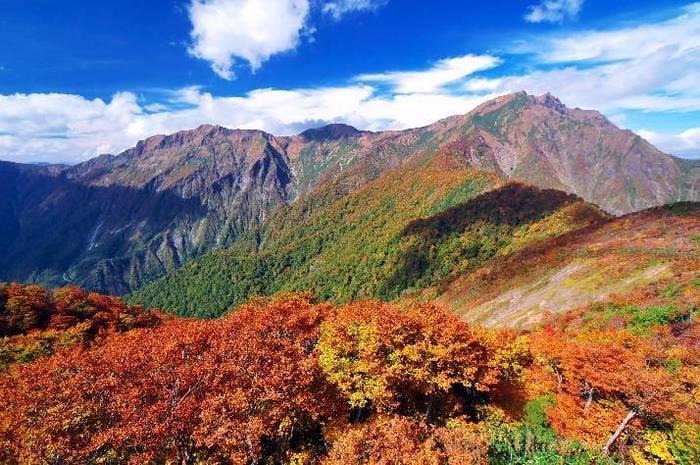 標高約1300mの場所にある谷川岳・天神平の紅葉の見頃は10月上旬~下旬。目の前に広がる紅葉パノラマは圧巻!また登山好きの方にも人気のスポットです。