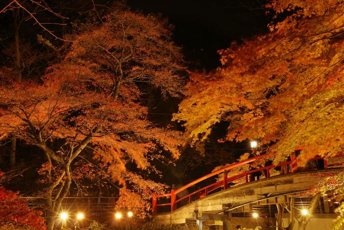 10月下旬から11月中旬が見頃の伊香保温泉は、温泉だけでなく紅葉スポットとしても人気の場所です。フォトスポットとして人気の高い河鹿橋は、新緑の季節の緑と赤のコントラストも素敵ですが、紅葉の季節の美しさは特別です。