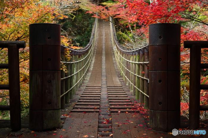 11月上旬から中旬が見頃となる花貫渓谷のおすすめスポットは、汐見滝吊り橋付近。紅葉を楽しんだら、近くにある海の見えるダム・花貫ダムに行ってみるのもおすすめです。