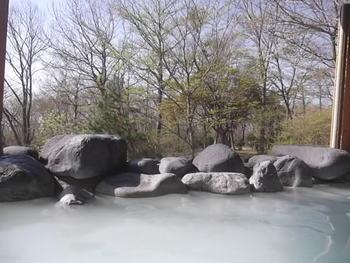 那須高原の紅葉を楽しんだ後におすすめのこちらの温泉は、白濁のとろりとした天然硫黄泉。美肌の湯に浸かりながら目の前に広がる紅葉を眺めれば、心も身体もほっこり癒されそう。