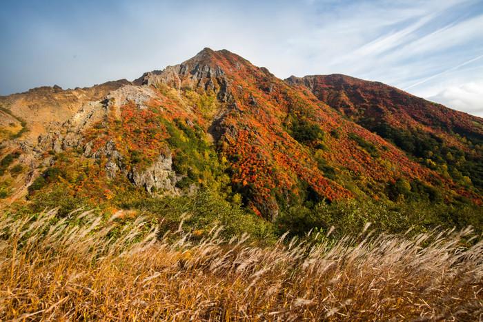 9月下旬から10月上旬に見頃を迎える那須高原。ロープウェイからの眺めを楽しんだり、サイクリングで自然を満喫したり、那須高原線をドライブするなど楽しみ方も色々です。