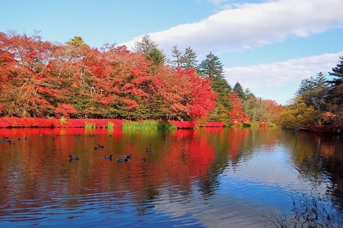 美しき日本の四季を見事なまでに体感させてくれる観光地「軽井沢」。この時期は美しい紅葉と冬の準備を始めるツンと澄んだ空気を感じさせてくれます。