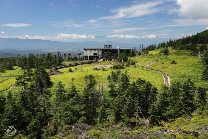 山頂駅前に広がる「坪庭自然園」は、溶岩石と高山植物が作り出す庭園で、国定公園第一種特別保護地域に指定されています。一周30分ほどで散策できるので、自然を満喫するにはぴったりです。
