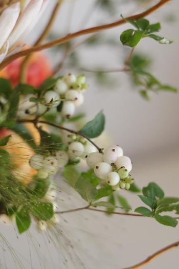 つやつやした真珠のような純白の実が連なるシンフォリカルポスは、その可憐な見た目からウエディングブーケにもよく使われる花材です。白のほかにピンクや淡いグリーンのものもあり、そちらもとっても可愛いですよ。