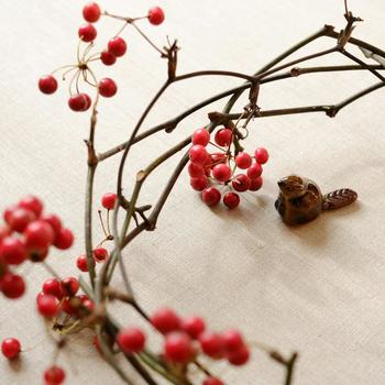 「山に入った病人がこの実を食べて元気になって帰って来た」という逸話もある「山帰来(サンキライ)」。夏の緑色の実は冬にかけて赤く色付きますが、食用ではなく薬として用いられていたようです。枝がよくしなるので、くるっと丸めてまとめるだけで素敵なリースになります。