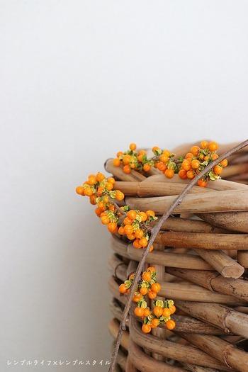 たとえばこちらのツルウメモドキ。弓なりの枝に鮮やかなオレンジの実が映えてとても綺麗ですね。花器に挿したり、ナチュラルテイストのインテリア雑貨と組み合わせて飾っておいても充分素敵なのですが…。