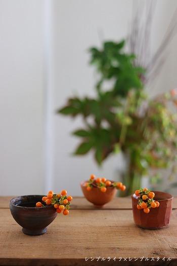 切り落とした余分な実も、こんなふうにおちょこに添えるだけでなんとも愛らしい感じに。ほかにもお気に入りの豆皿など、家にあるちょっとした器に乗せてみましょう。秋の実の新しい表情を発見できるかもしれません。