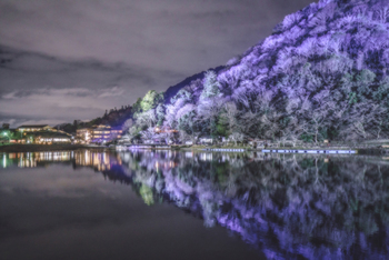 嵐山の紅葉は、12月上旬までが見頃。紅葉の時期に間に合わなかった…という方には、「嵐山花灯路」を訪れてみてはいかがでしょうか。京都では「灯り」をテーマにしたイベント『京都・花灯路』を、春は東山で、冬は嵐山で開催しています。