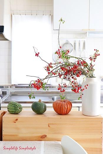 赤と緑の実をたっぷりつけたヤマホロシを、収穫したカボチャとともにキッチンへ。野山の一部をそのままおうちへお招きしたような野性味のあるヤマホロシの枝振りが、カラフルなカボチャとも絶妙にマッチしています。まさに実りの季節を感じさせてくれる、秋色尽くしのインテリアです。