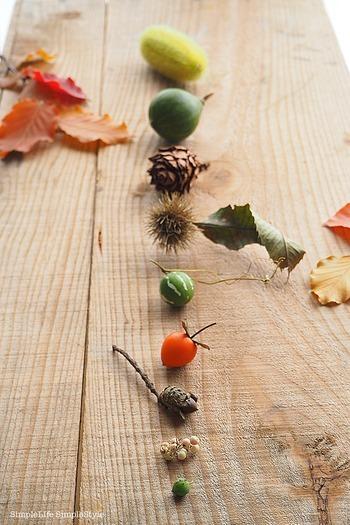お部屋に飾っていた枝ものから実が落ちても、捨ててしまうのはもったいない!秋の実はどれも、見れば見るほど個性的です。ポンと置いておくだけでも絵になりますし、ひと工夫したアレンジでおしゃれなオブジェも作れますよ。
