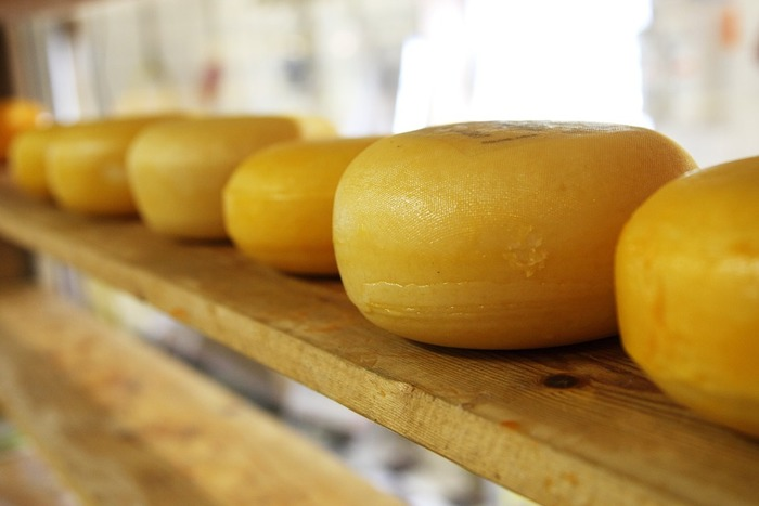 ヨーグルトのメリットは、動物性の乳酸菌が豊富で、牛乳の栄養も生きていること。また、チーズにはビタミンB2やカルシウムなど、栄養が凝縮されて含まれているのが特徴です。とくに熟成期間が長いハード・セミハードのナチュラルチーズは栄養価がより高くなります。