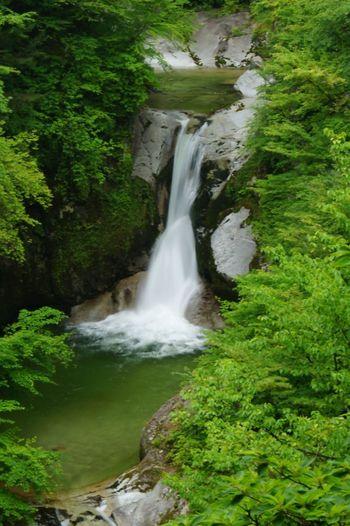 八ヶ岳~小淵沢エリアは、山梨県の北西部にあり、長野県との県境に位置します。  八ヶ岳連邦の麓にあり、美しい景色と豊かな自然が魅力です。北アルプスの山々から美味しい水が流れ出るため、エリア内にはサントリー白州蒸溜所をはじめとした、銘水を使った製品を作る工場も多く見られます。