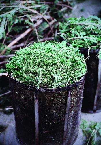 香りはこちらもリップバームと同じく、「スプリングエフェメラル」と「ライケン」の2種類です。深い森を思わせる香りに癒されながら、全身をマッサージする冬の夜…きっと素敵な時間になりますよ。