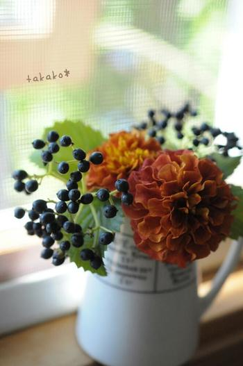 ガマズミ属の木は多数あるのですが、トキワガマズミという和名を持つこちらのビバーナム・ティヌスもそのひとつ。枝先に黒い果実が密集してつき、秋の花や葉ものとあわせてアレンジに使うととてもシックな雰囲気に仕上がります。