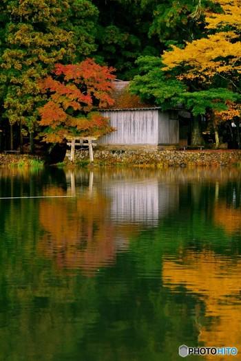 水面に映る紅葉もこれまた美しい。絵本の世界に入り込んだかのような、幻想的な風景を堪能してみてください。