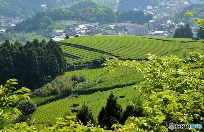 佐賀県嬉野市にある「嬉野温泉」は、日本三大美肌の湯として有名な温泉地です。1300年以上の歴史があり、「肥前風土記」にも嬉野の名前が載っています。商店街の中心部にある湯遊広場には「シーボルトの足湯」があります。この足湯は、24時間無料で利用できる温泉で、地元民はもちろん観光客にも大人気!昔から愛されている古湯を満喫してみてください♪
