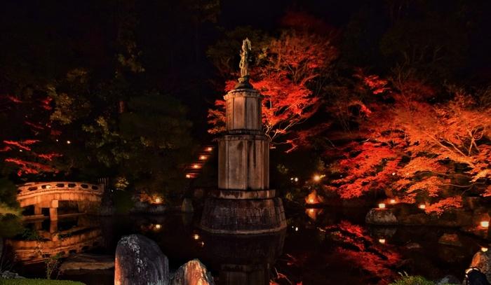 昼間の顔とはガラリと変わる、夜のライトアップ風景も魅力です。こちらは境内にある「友禅苑」の様子。どこか妖しげで美しい景色に、魅了されること間違いなし。境内は広いので、ゆっくり参拝できるように時間も調整したいところです。