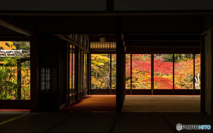 京都の中心部から東側、「洛東」と呼ばれる地域は、中心部からもほど近く、ライトアップをしている神社仏閣も多いのでおすすめです。今回は「洛東」エリアの神社仏閣をメインにご紹介します。コースも組みやすいので、ぜひ参考にしてみてくださいね。