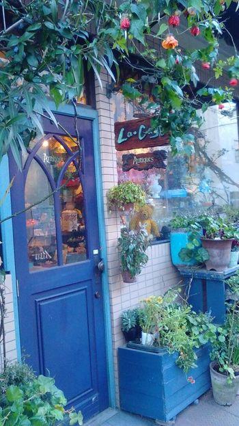 西荻窪の魅力は数多くあります。  ・自然に豊かな善福寺公園や井草八幡宮がそばにある。 ・常連さんにも一見さんにも優しいお店が多い。 ・アンティークショップや雑貨屋さんがおしゃれ。 ・杉並アニメーター学院などがあり、芸術・文化が色濃い。 ・魅力的なカフェ、歴史のある喫茶店や書店が多く、散歩しているだけでも楽しい。  などなど、数えあげるときりがありません。そんな素敵な街、西荻窪に散歩に出かけてみませんか?