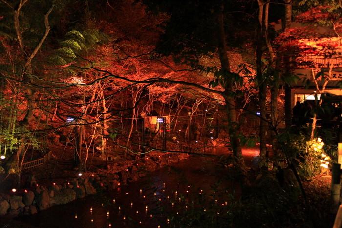 縁結びの神としても人気を集める「貴船神社」も、おすすめの紅葉スポット。こんなロマンチックな景色を観ながらの散歩は最高ですね!貴船神社へは京都バスの貴船神社で下車、そこから徒歩約5分です。
