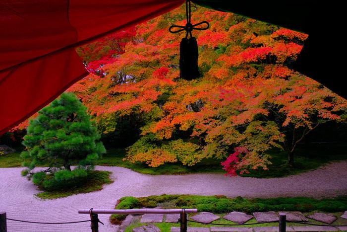 京都の紅葉の見頃は、平年は11月下旬~12月上旬といわれています。2018年の予報は、平野部は11月中旬頃~、山間部は11月下旬頃~と、少しだけ早めの様子。ただ、天候・気温によって前後する可能性もあります。天気予報など確認して、しっかり予定を立てお出かけしましょう。
