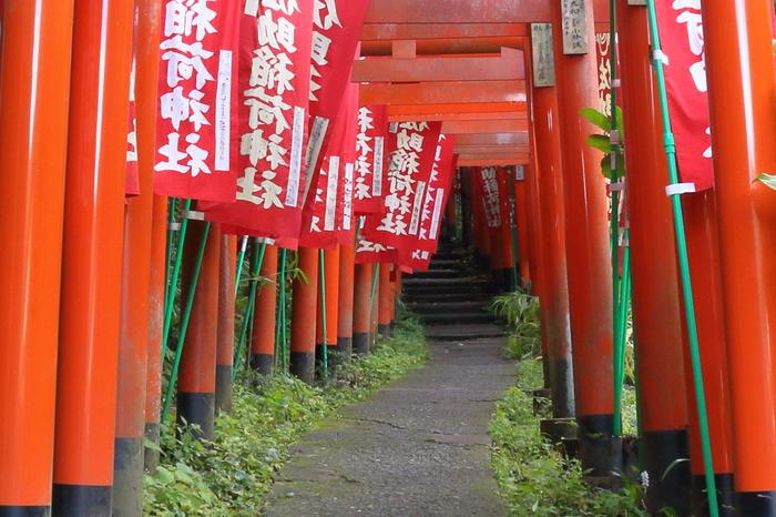 鎌倉駅から徒歩約17分。住宅街の中にある朱い鳥居が続く神社「佐助稲荷神社」。出世・開運の神様を祀っていて、パワースポットとしても人気の神社です。