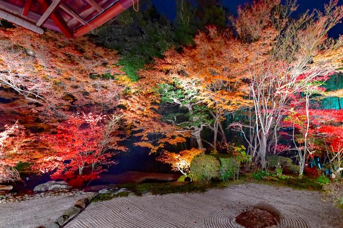 夜のライトアップも行われる神社仏閣をご紹介してきました。せっかく京都で紅葉観光を楽しむのなら、朝やお昼だけでなく夜までたっぷり堪能しましょう。今年の秋は、京都で紅葉めぐりの旅を楽しんでくださいね。
