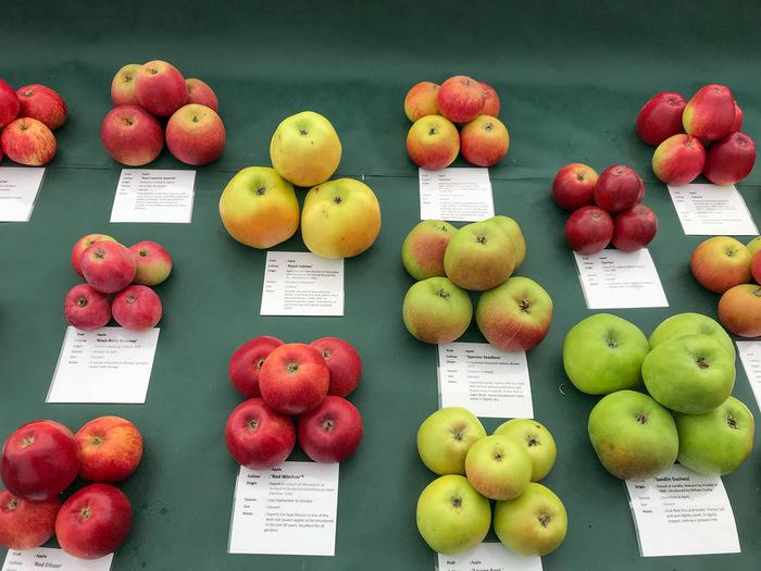 りんごは品種が豊富です。10月~11月にかけては香りの良い「シナノスイート」やアップルパイなどにぴったりな「紅玉」、ジューシーな果汁が人気の「ふじ」などが収穫できます。農園によって栽培品種が異なるので、お好みのりんごがある方はあらかじめ確認しておきましょう。