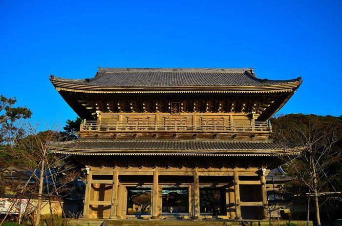 材木座海岸からすぐの場所にある大きなお寺「光明寺」。鎌倉駅からバスで「小坪経由逗子駅行き」に乗り「光明寺」下車すぐです。本堂裏手の山には展望台があり、材木座海岸から由比ヶ浜までを見渡すこともできます。
