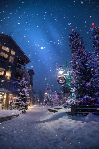 クリスマスは、イルミネーションを見たり、ご馳走を食べに行ったり、特別なお出かけもいいけれど、ゆっくりとお家で過ごすのもいいですよね。