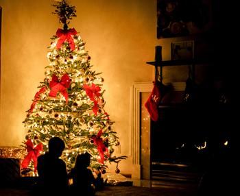 小さいお子さんがいるご家庭など、今年はお家クリスマスかな?というご家族におすすめしたい、家族みんなで楽しめるクリスマス映画。サンタさんの到着を待ちながら、ワクワクできる作品を紹介します。
