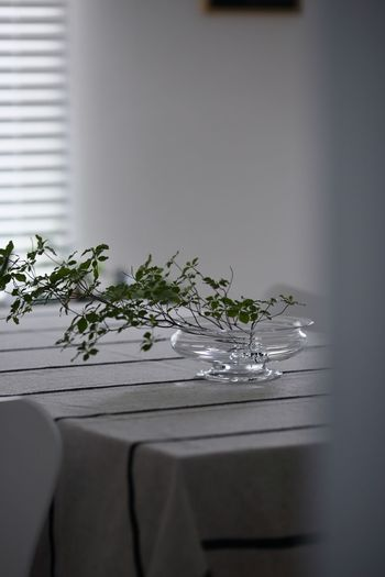 紐のように交錯したガラスの間に茎を挿して支えます。こんなふうに、浅いフラワーボウルに枝ものを生けても美しくまとまります。