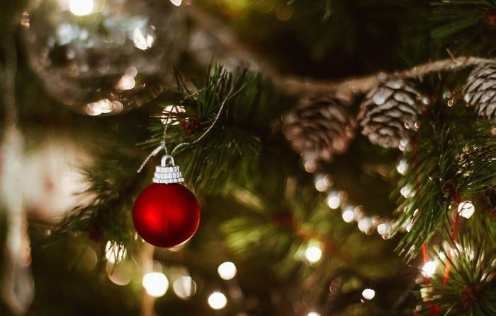 お好みはゴージャス?ボタニカル?気軽に楽しむ「クリスマス」の飾りつけアイデア