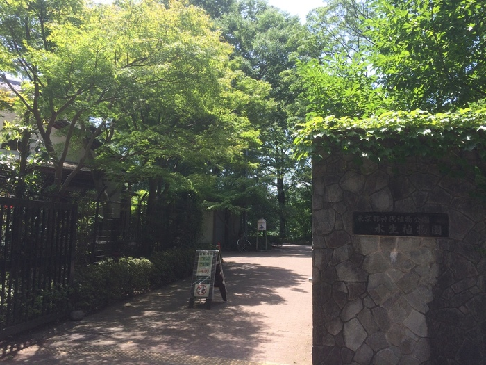 京王線の調布駅、または中央線の三鷹駅からそれぞれバスで20分ほどのところにある「神代植物公園」。都内で唯一の植物公園で、園内には約4,800種類、10万本の樹木が植えられています。約5,000平方メートルと広大なので、すべてのエリアを見ると1日かかってしまうほど。園内は「うめ園」「つばき・さざんか園」など植物の種類ごとに約30ブロックに分かれているので、開花状況をチェックしてまわるのがおすすめです。
