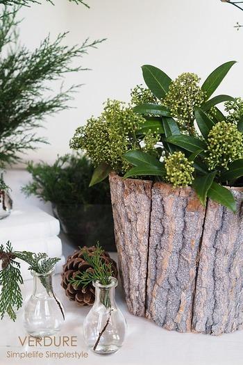 いっぽうで、ボタニカルな雰囲気たっぷりな飾り付けも引き続き流行しそうです。 フレッシュな木の枝だけを集めても、こんなにおしゃれなディスプレイに♪ しっとりとした森の空気感を感じるような深緑、大きな切り株はボタニカルクリスマスの主役に。