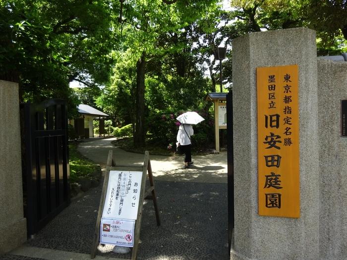 江戸東京博物館の裏手、隅田川方向にある「旧安田庭園」は、江戸時代から残る大名庭園です。両国駅から歩いて5分ほどで、緑豊かな庭園散策を楽しんでみませんか?