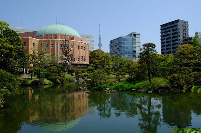 江戸時代に、常陸国笠間藩主だった本庄因幡守宗資氏によって築造された「旧安田庭園」。当時は、隅田川の水を池に取り入れ、隅田川の干満を利用して眺めの変化を鑑賞する庭園でした。水の満ち引きで変わる池の様子を楽しむなんて、風情がありますよね。
