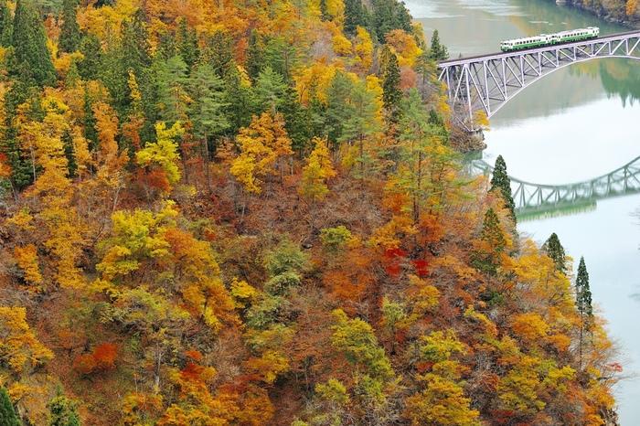 錦のように織りなす紅葉とアーチ形の橋、そして列車が映る水面の景色は、まるで一枚の絵画のようです。  奥会津の紅葉は、今が盛り。只見線の車窓から、ゆったりと奥会津の美しい景観を楽しんでみましょう。
