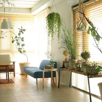 ナチュラルなお部屋に欠かせないのがインテリアグリーンです。空間に瑞々しさをプラスする観葉植物は、写真のように吊るしたり並べたりと、高低差を意識すればおしゃれな仕上がりに。