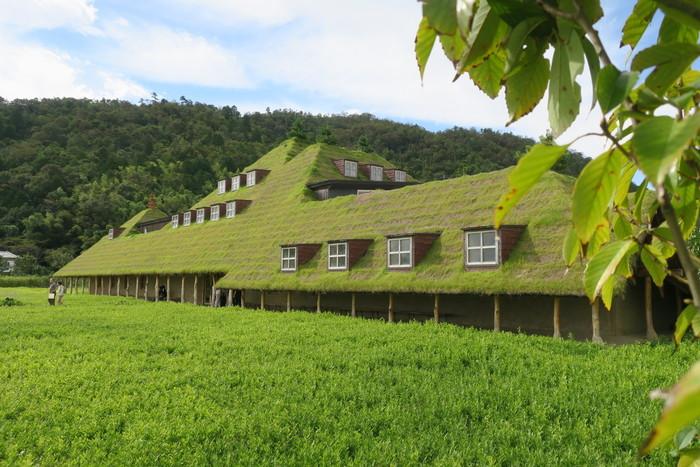 芝に覆われた屋根が印象的な「ラ コリーナ近江八幡」。バウムクーヘンで有名なCLUB HARIE(クラブハリエ)を運営しているたねやグループのフラッグシップ店です。たねやの会長がこの自然豊かな近江八幡の地に惚れ込み、作られました。